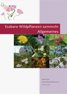 2d newsletter e-book nov 2016 © Kersten Sitte, www.essbarewildpflanzen.at