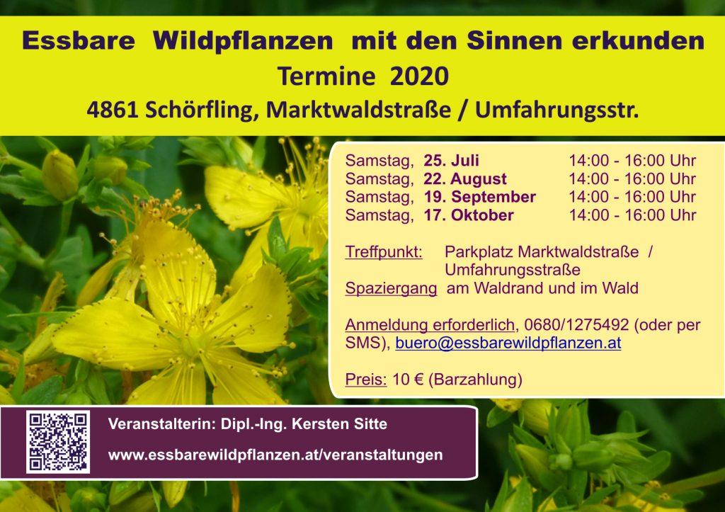 Veranstaltugnen 2020 © Kersten Sitte, www.essbarewildpflanzen.at