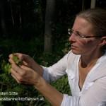 Kersten Sitte mit Kratzdistel © Kersten Sitte, www.essbarewildpflanzen.at