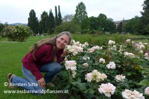 Kersten Sitte mit Rosen © Kersten Sitte, www.essbarewildpflanzen.at