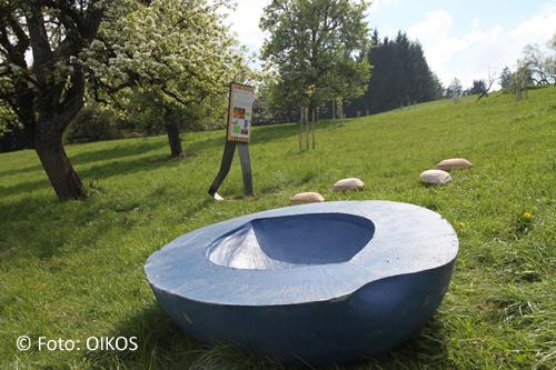 Naturerlebnisweg Gmundnerberg 5 © Foto: OIKOS