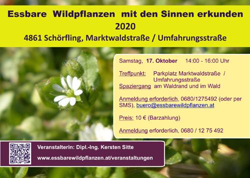 Veranstaltugnen 17.10.2020 © Kersten Sitte, www.essbarewildpflanzen.at