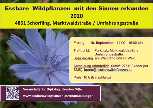 Veranstaltugnen 18.09.2020 © Kersten Sitte, www.essbarewildpflanzen.at