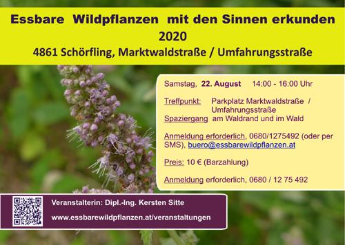 Veranstaltugnen 22.08.2020 © Kersten Sitte, www.essbarewildpflanzen.at