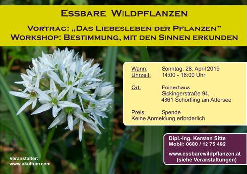 Essbare Wildpflanzen Vortrag + Bestimmung, Schörfling am Attersee am 28.4.2019 © Kersten Sitte, www.essbarewildpflanzen.at