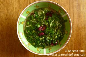 Knackige Wildpflanzen-Gemüse-Suppe