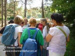 pötzleinsdorfer park 3.9.2016-3 © Kersten Sitte, www.essbarewildpflanzen.at