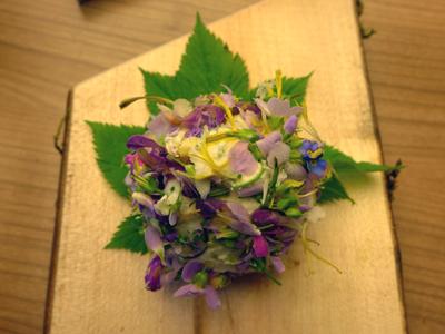 Rezepte © Kersten Sitte, www.essbarewildpflanzen.at