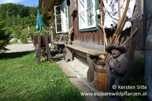 steinleitn alm hütte 4 © Kersten Sitte, www.essbarewildpflanzen.at