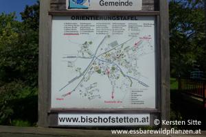 steinleitn alm orientierungstafel © Kersten Sitte, www.essbarewildpflanzen.at