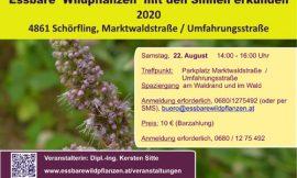 Essbare Wildpflanzen am 22.08.2020 mit den Sinnen erkunden