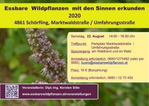 Read more about the article Essbare Wildpflanzen am 22.08.2020 mit den Sinnen erkunden