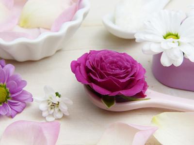 Inhaltsstoffe, Bild von silviarita by pixabay © Kersten Sitte, www.essbarewildpflanzen.at