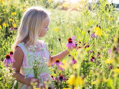 Kind, Bild von JillWellington by pixabay © Kersten Sitte, www.essbarewildpflanzen.at