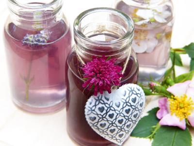 Tinktur, Bild von silviarita by pixabay © Kersten Sitte, www.essbarewildpflanzen.at
